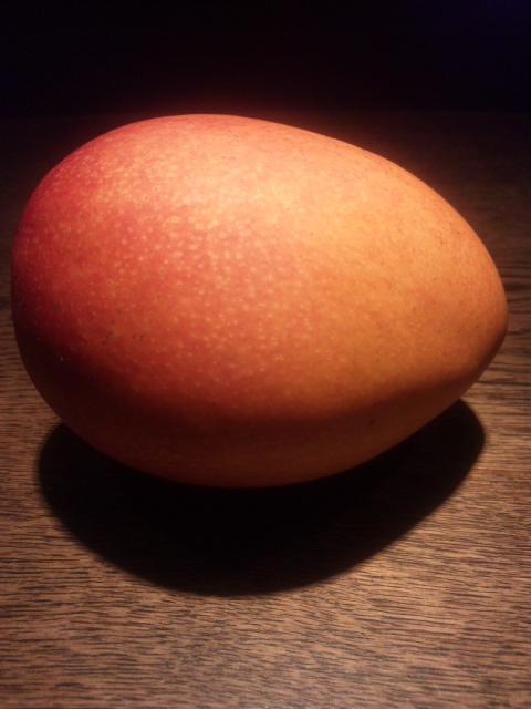 鹿児島県南さつま市秀美園の無農薬有機栽培マンゴー!